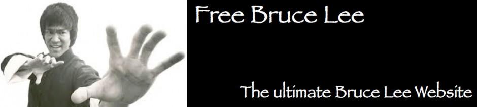 jeet kune do book free