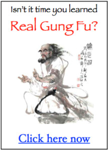 gung fu training manual
